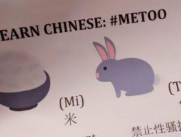 Creatieve vertaling #MeToo in China is #RiceBunny