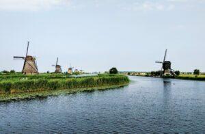 Nederlands als studie populair in het buitenland