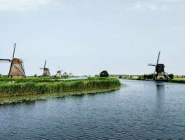 Dutch studies abroad are popular